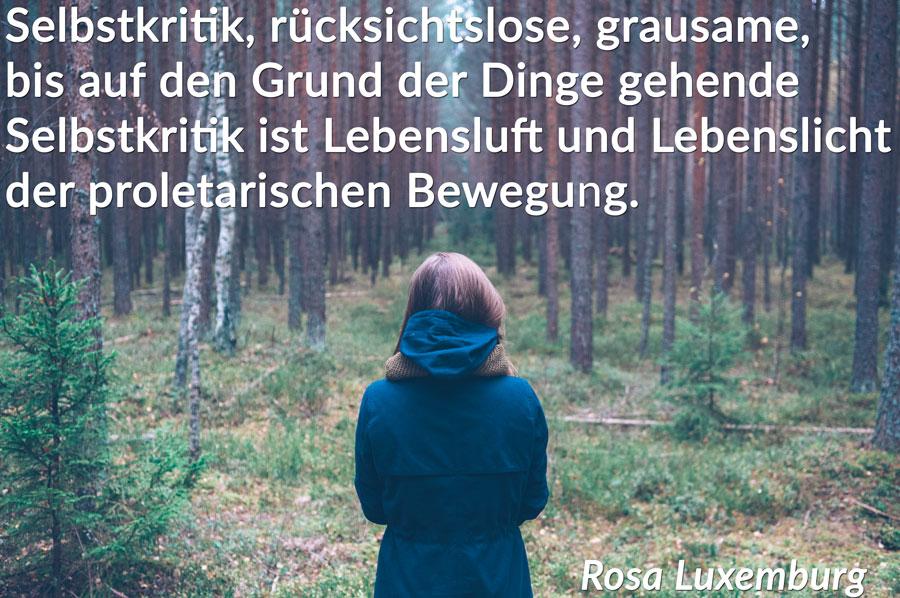 rosa-luxemburg-sozialdemokratie