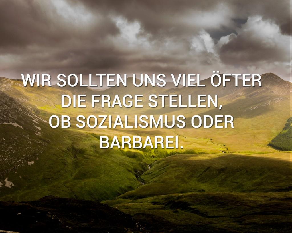 sozialismus-barbarei