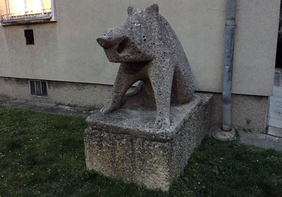 stein-schwein