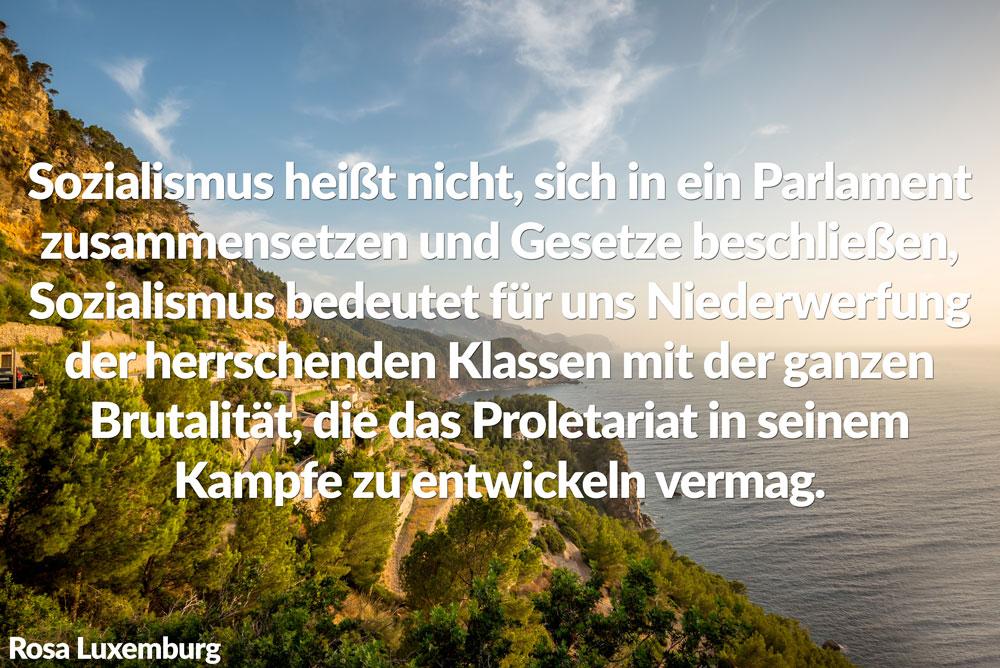 rosa-luxemburg-zitat